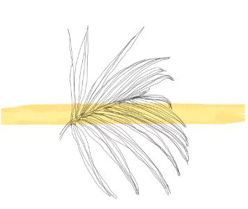 Палмино уље